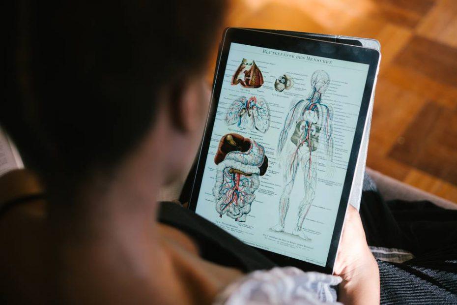 bambino che legge sul tablet